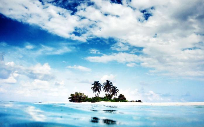 trees-on-the-small-island (1).jpg